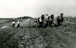 昭和17年美英校生徒芋掘り手伝い